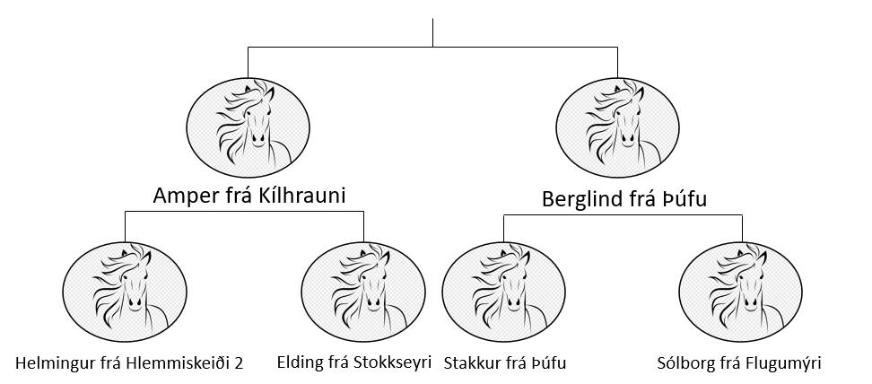 Evrópa frá Strönd II